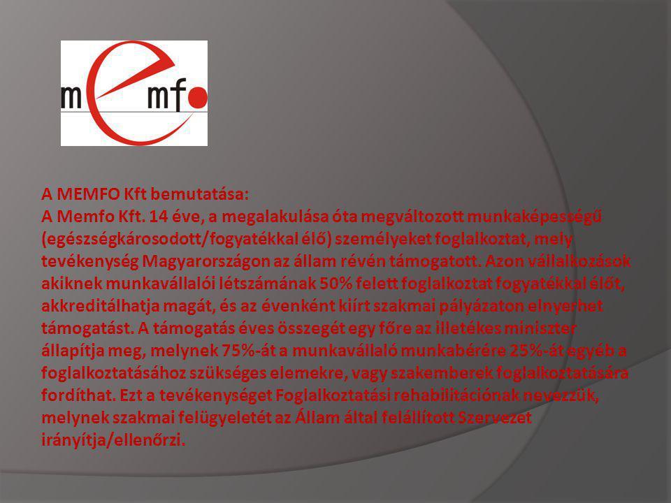 A MEMFO Kft bemutatása: