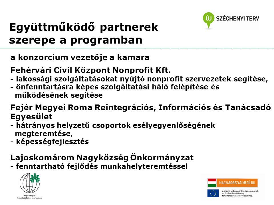 Együttműködő partnerek szerepe a programban