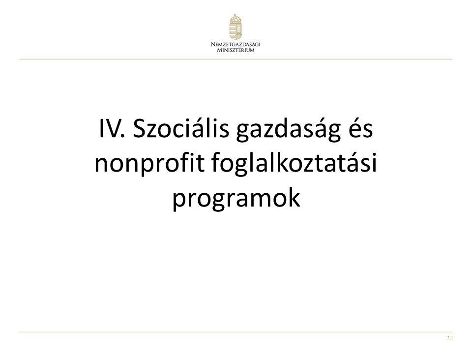 IV. Szociális gazdaság és nonprofit foglalkoztatási programok