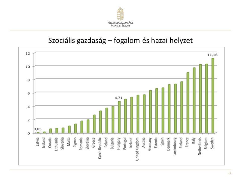Szociális gazdaság – fogalom és hazai helyzet