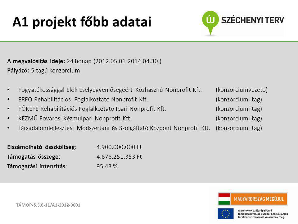 2012.12.03. A1 projekt főbb adatai. A megvalósítás ideje: 24 hónap (2012.05.01-2014.04.30.) Pályázó: 5 tagú konzorcium.