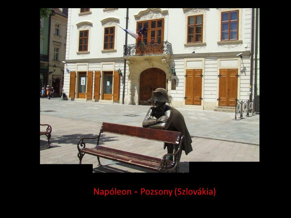 Napóleon - Pozsony (Szlovákia)