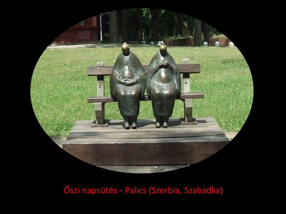 Őszi napsütés - Palics (Szerbia, Szabadka)