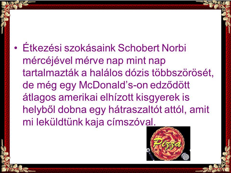 Étkezési szokásaink Schobert Norbi mércéjével mérve nap mint nap tartalmazták a halálos dózis többszörösét, de még egy McDonald's-on edződött átlagos amerikai elhízott kisgyerek is helyből dobna egy hátraszaltót attól, amit mi leküldtünk kaja címszóval.