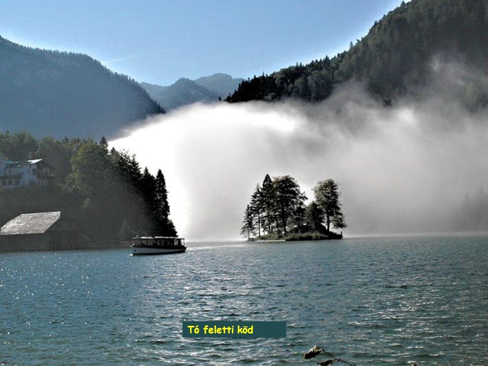Tó feletti köd