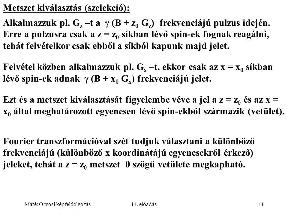 Metszet kiválasztás (szelekció):