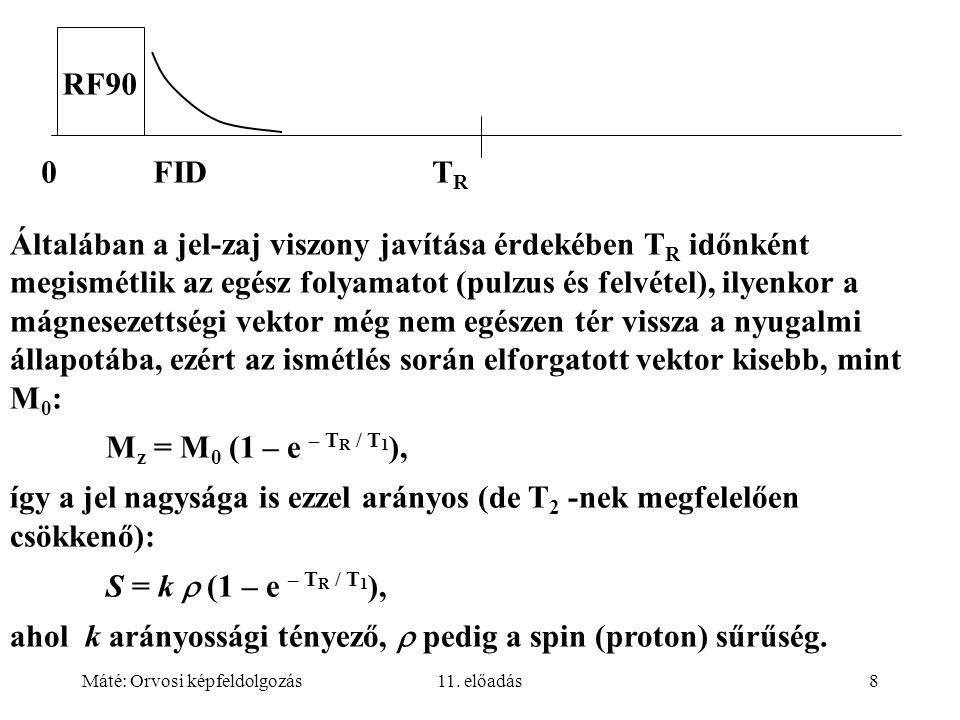 így a jel nagysága is ezzel arányos (de T2 -nek megfelelően csökkenő):