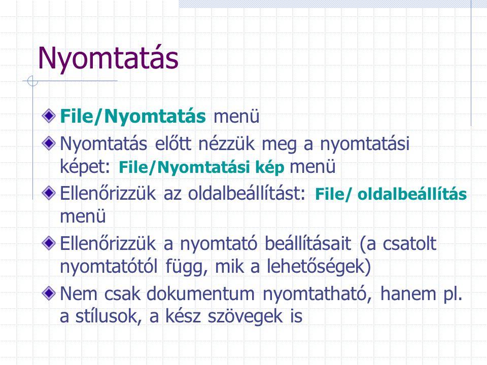 Nyomtatás File/Nyomtatás menü