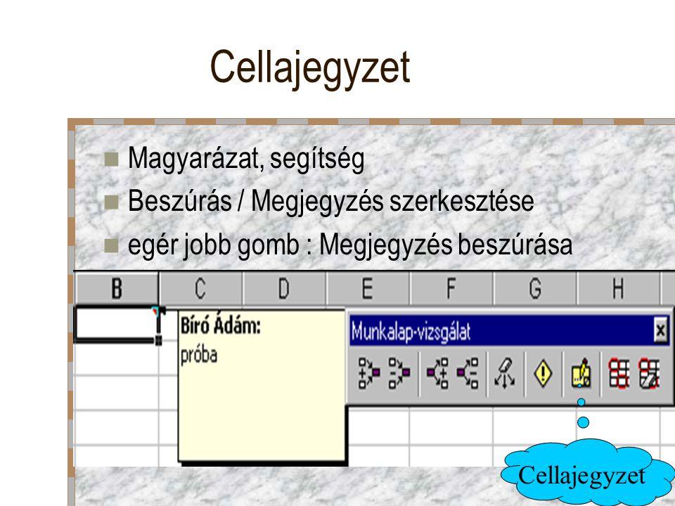 Cellajegyzet Magyarázat, segítség Beszúrás / Megjegyzés szerkesztése