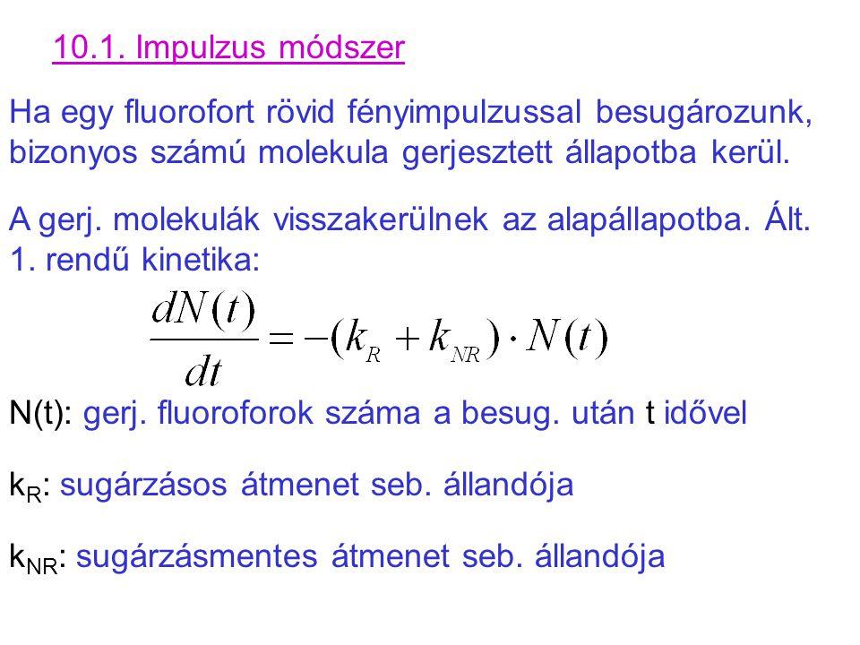 10.1. Impulzus módszer Ha egy fluorofort rövid fényimpulzussal besugározunk, bizonyos számú molekula gerjesztett állapotba kerül.