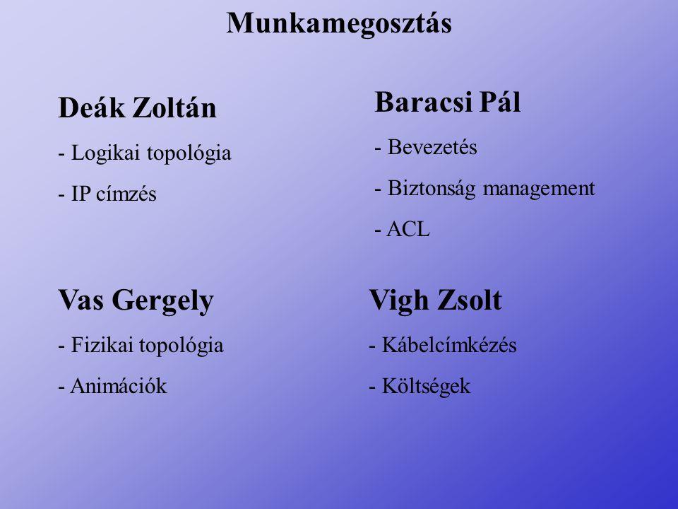 Munkamegosztás Baracsi Pál Deák Zoltán Vas Gergely Vigh Zsolt