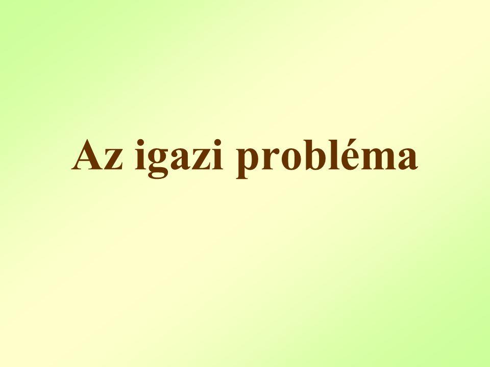 Az igazi probléma