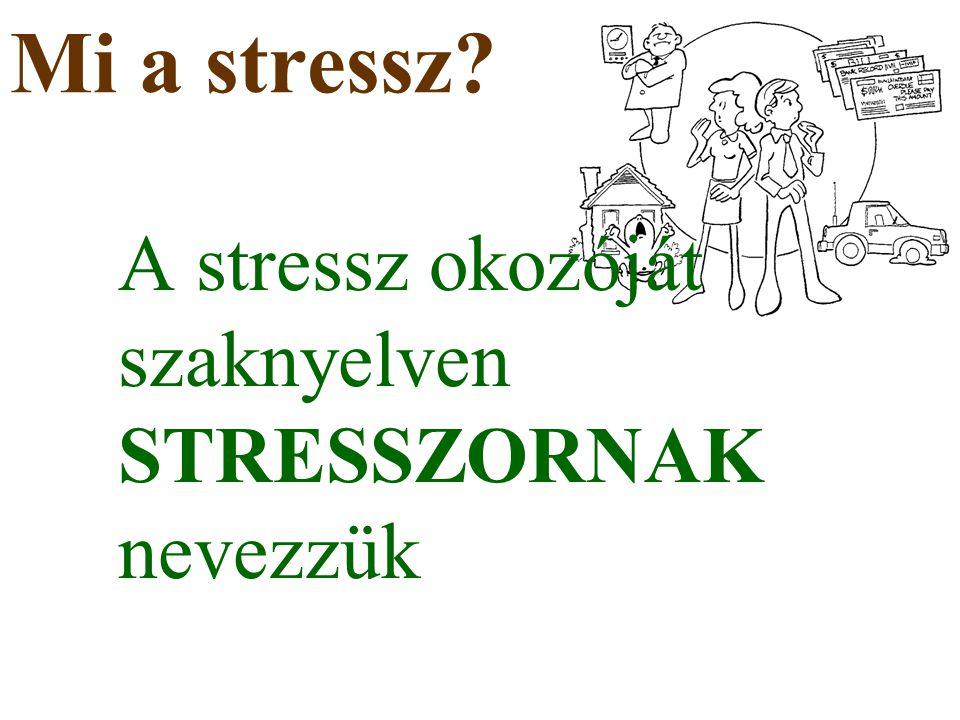 Mi a stressz A stressz okozóját szaknyelven STRESSZORNAK nevezzük