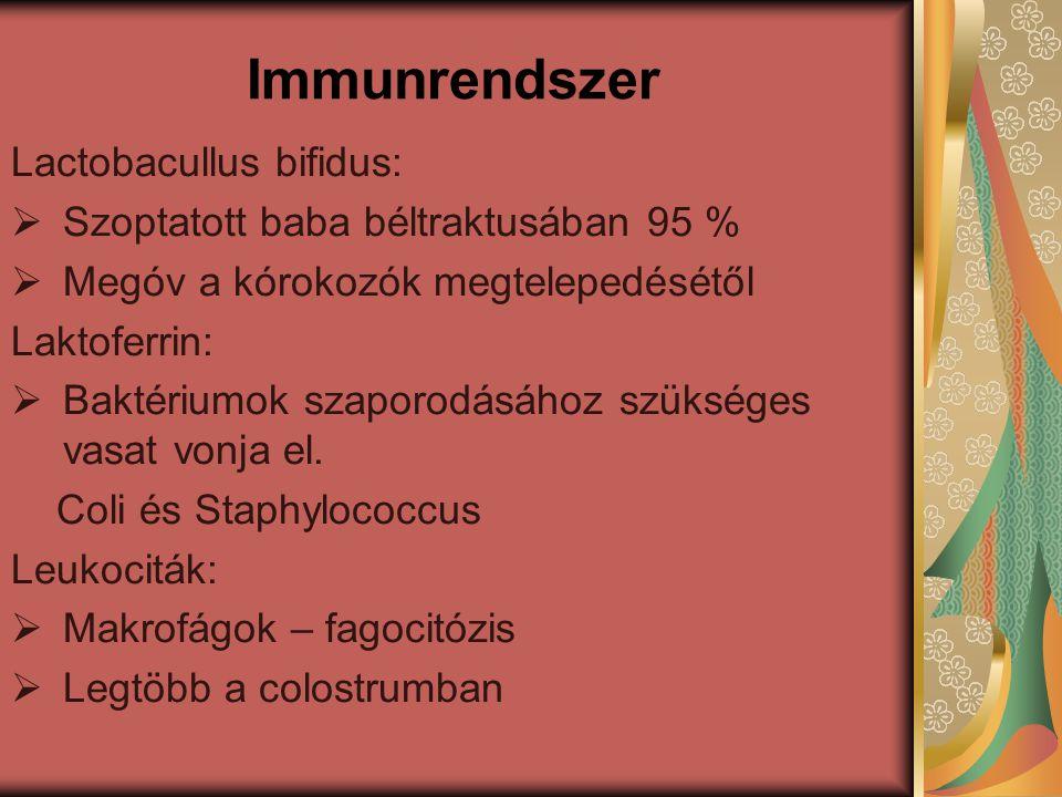 Immunrendszer Lactobacullus bifidus: