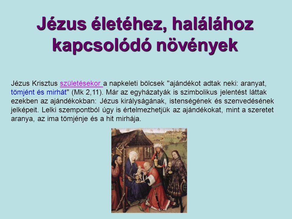 Jézus életéhez, halálához kapcsolódó növények