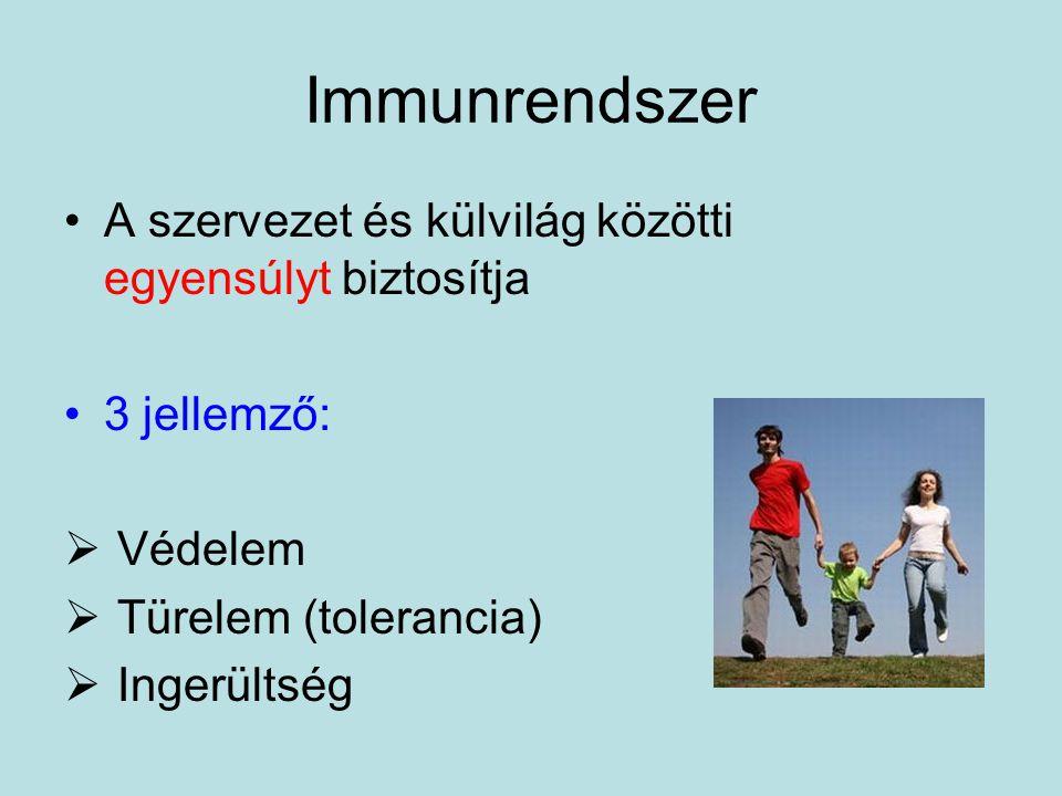 Immunrendszer A szervezet és külvilág közötti egyensúlyt biztosítja