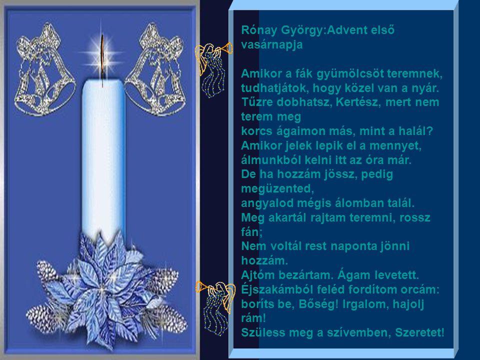 Rónay György:Advent első vasárnapja Amikor a fák gyümölcsöt teremnek, tudhatjátok, hogy közel van a nyár.