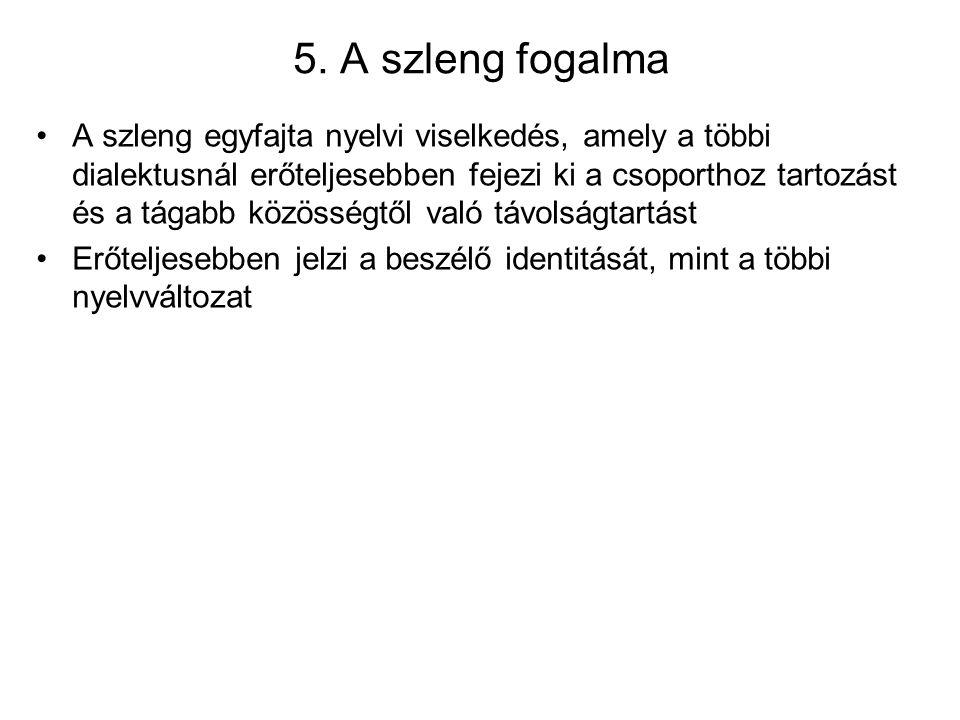 5. A szleng fogalma
