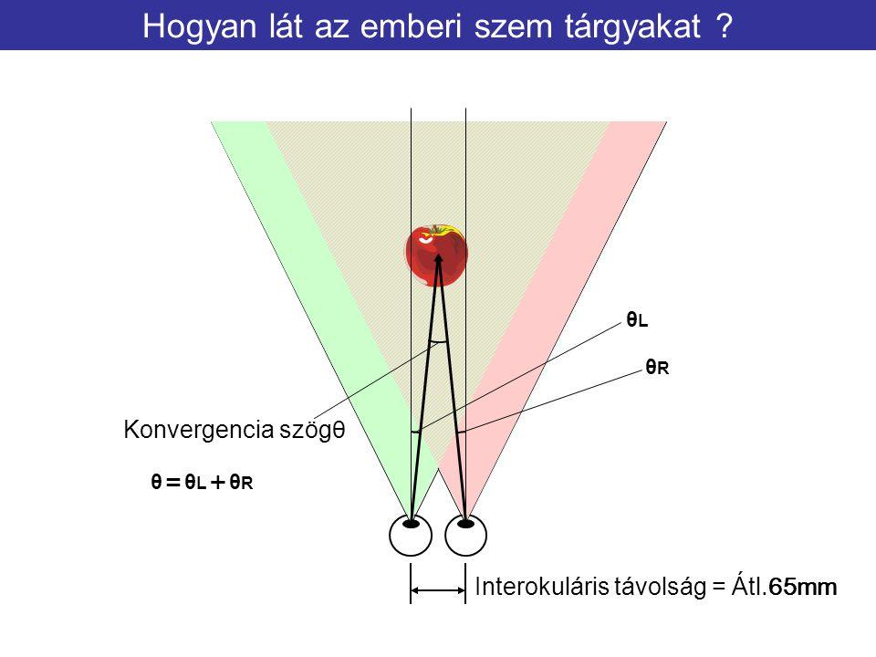Hogyan lát az emberi szem tárgyakat
