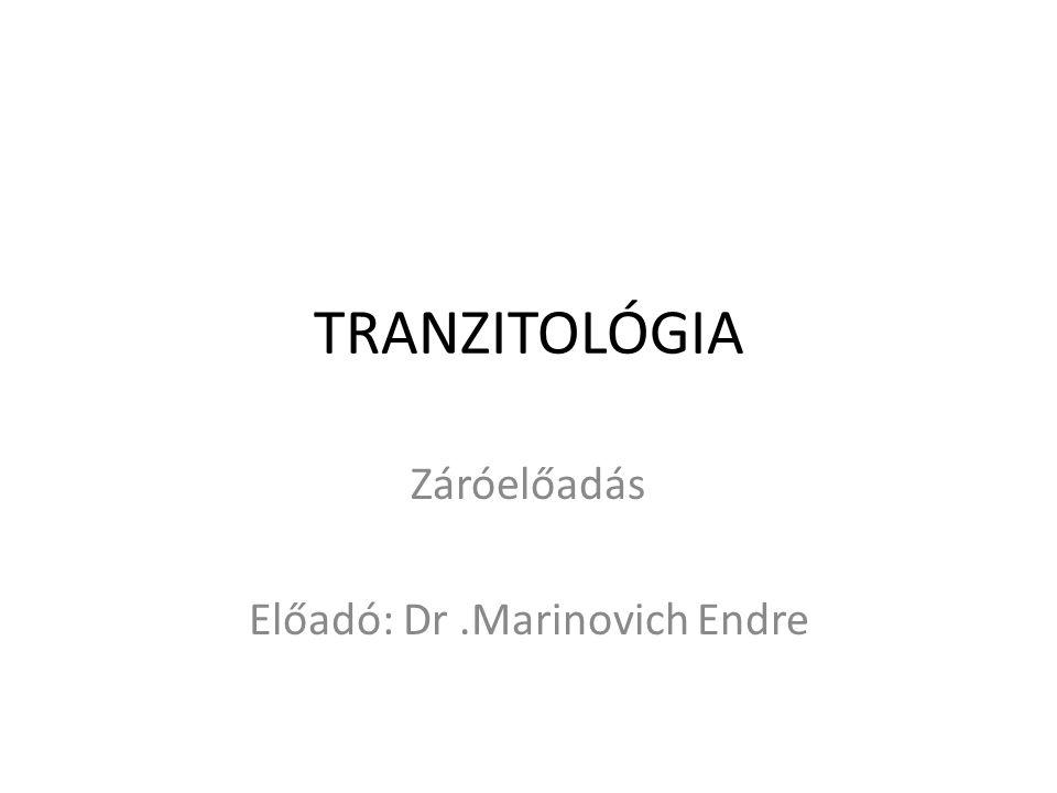 Záróelőadás Előadó: Dr .Marinovich Endre