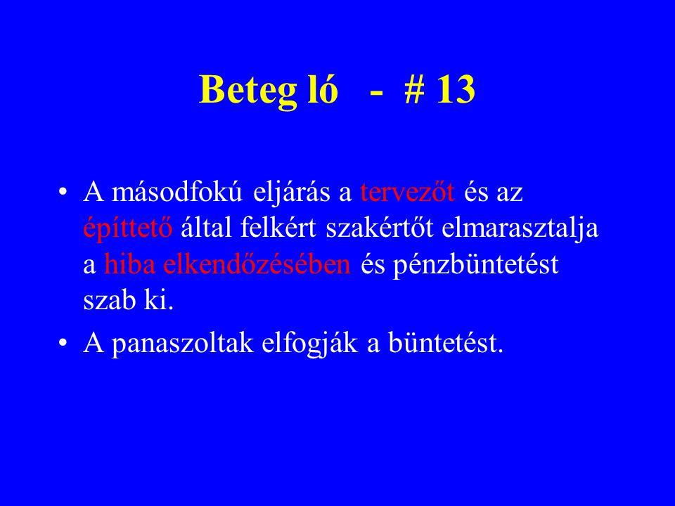 Beteg ló - # 13