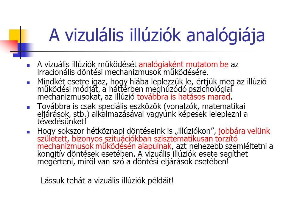 A vizulális illúziók analógiája