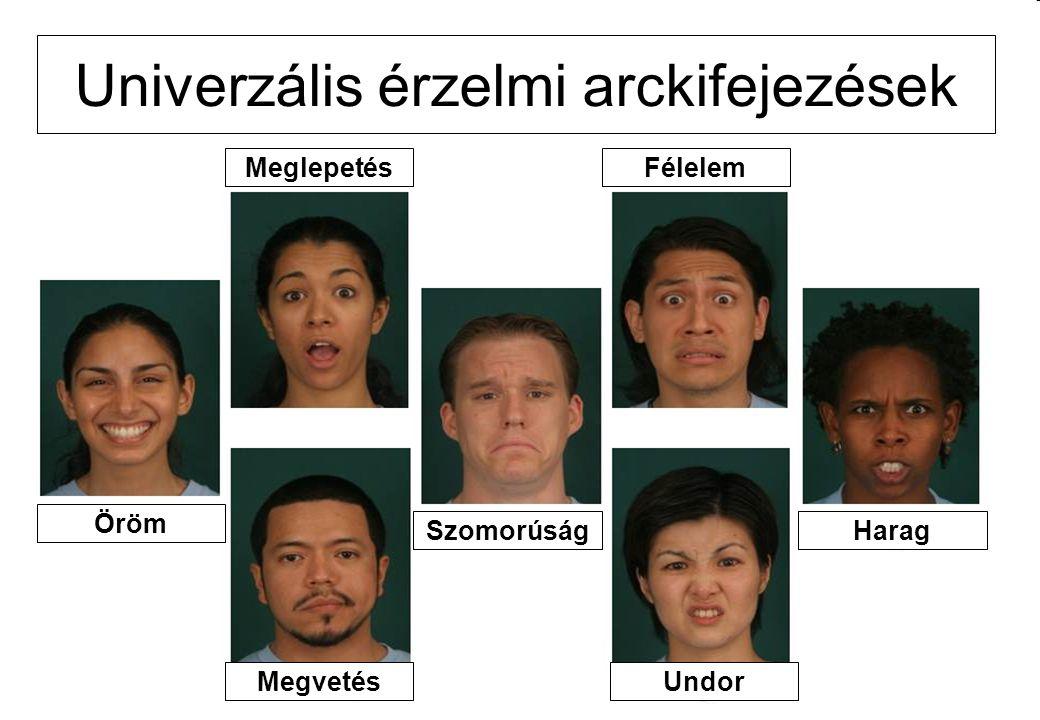 Univerzális érzelmi arckifejezések