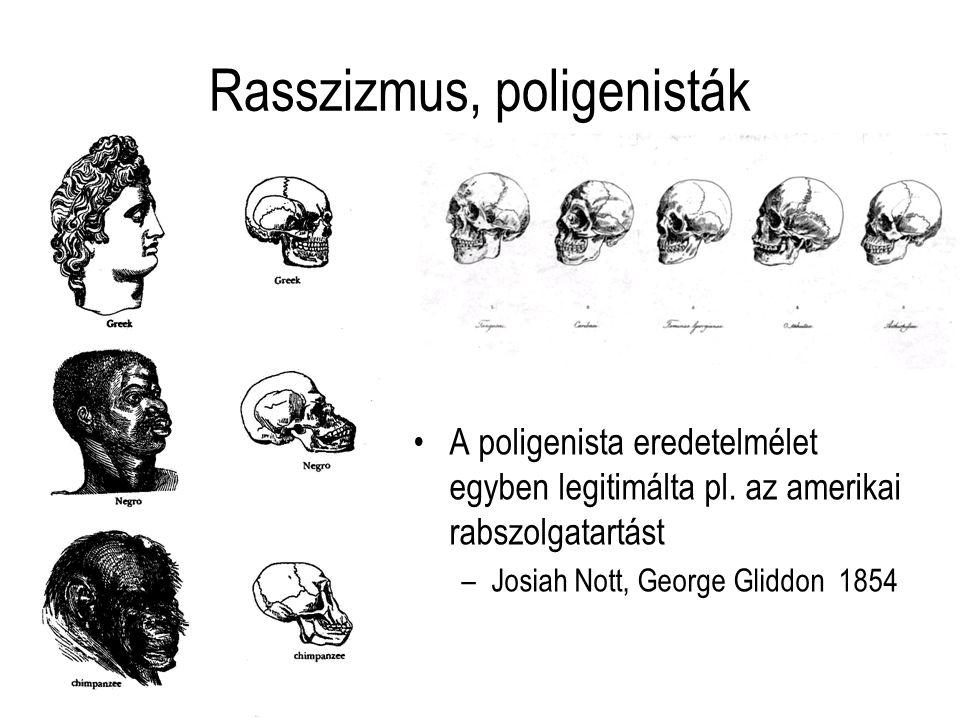 Rasszizmus, poligenisták
