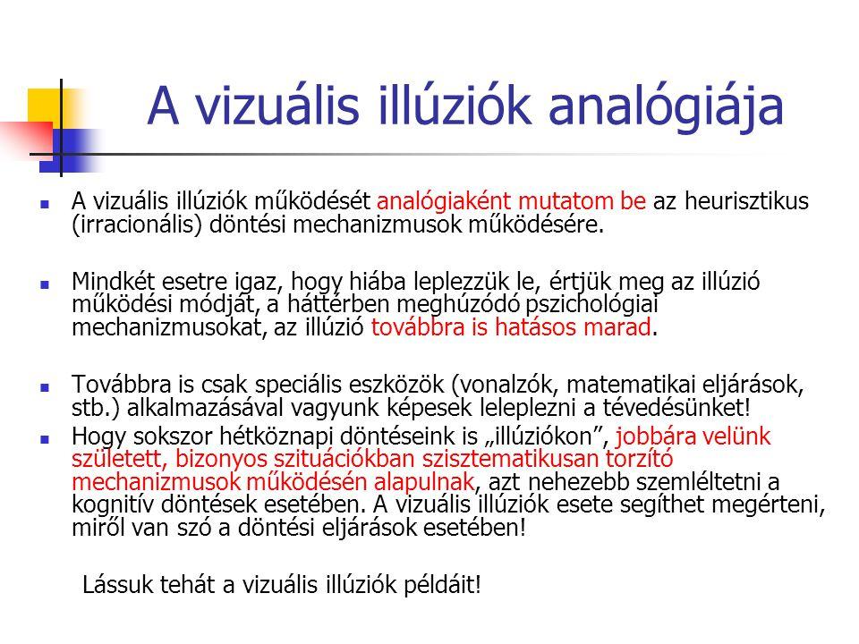 A vizuális illúziók analógiája