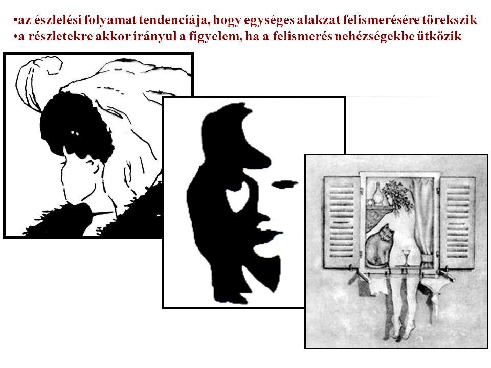 az észlelési folyamat tendenciája, hogy egységes alakzat felismerésére törekszik