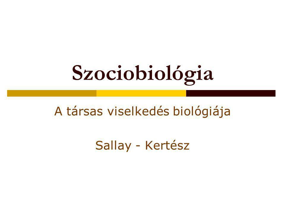 A társas viselkedés biológiája Sallay - Kertész