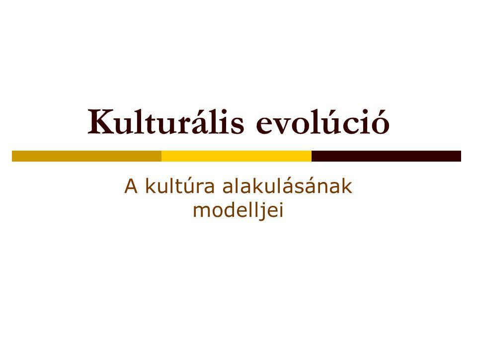 A kultúra alakulásának modelljei