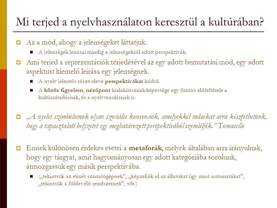 Mi terjed a nyelvhasználaton keresztül a kultúrában
