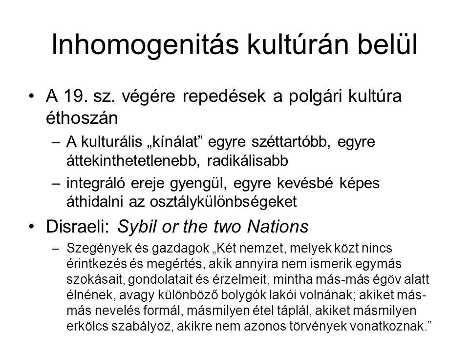 Inhomogenitás kultúrán belül