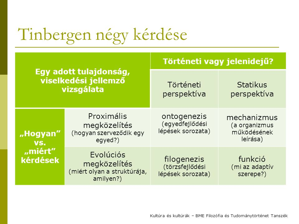 Tinbergen négy kérdése