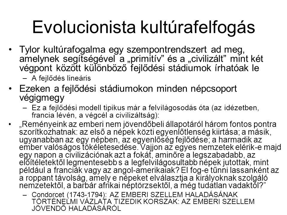 Evolucionista kultúrafelfogás