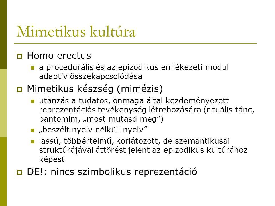 Mimetikus kultúra Homo erectus Mimetikus készség (mimézis)