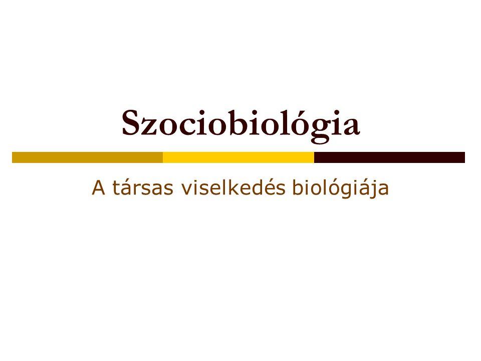 A társas viselkedés biológiája