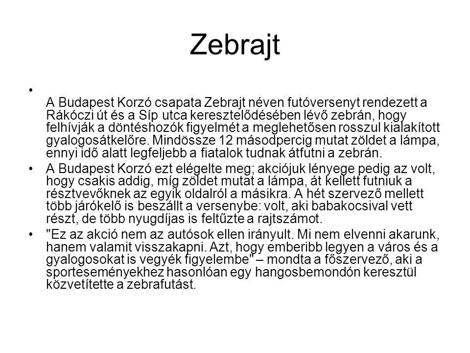 Zebrajt