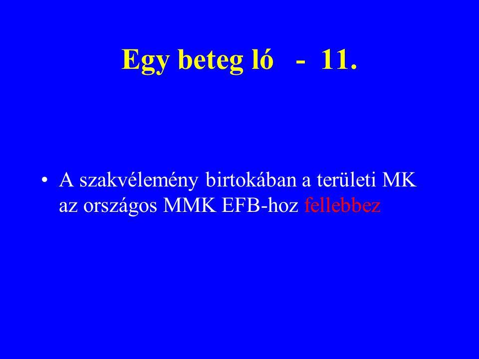 Egy beteg ló - 11. A szakvélemény birtokában a területi MK az országos MMK EFB-hoz fellebbez