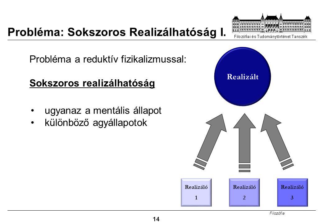 Probléma: Sokszoros Realizálhatóság I.