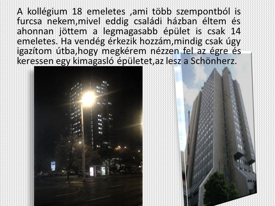 A kollégium 18 emeletes ,ami több szempontból is furcsa nekem,mivel eddig családi házban éltem és ahonnan jöttem a legmagasabb épület is csak 14 emeletes.