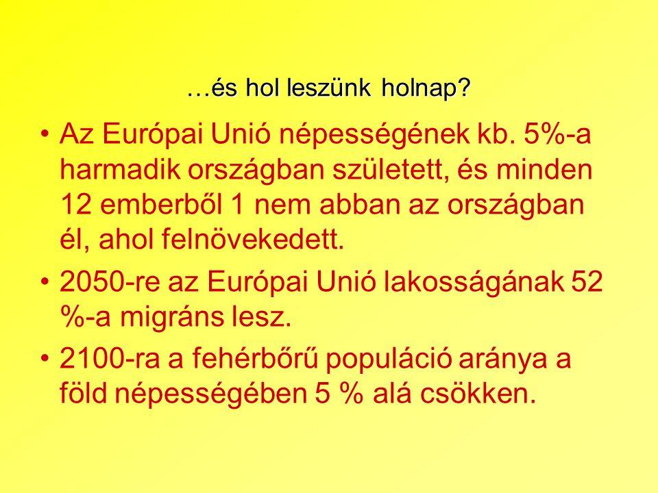 2050-re az Európai Unió lakosságának 52 %-a migráns lesz.