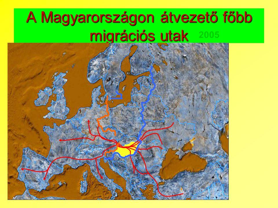 A Magyarországon átvezető főbb migrációs utak