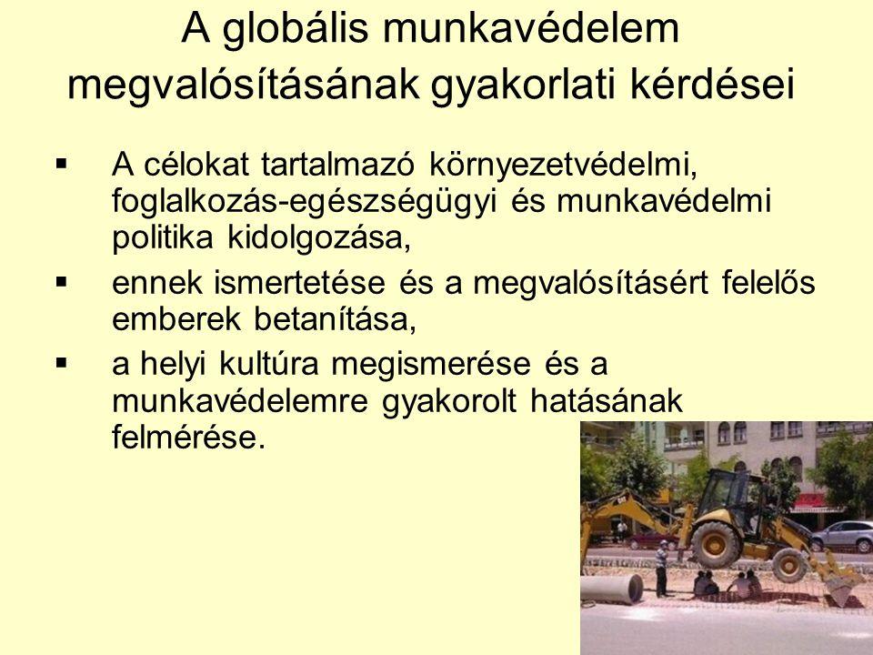 A globális munkavédelem megvalósításának gyakorlati kérdései