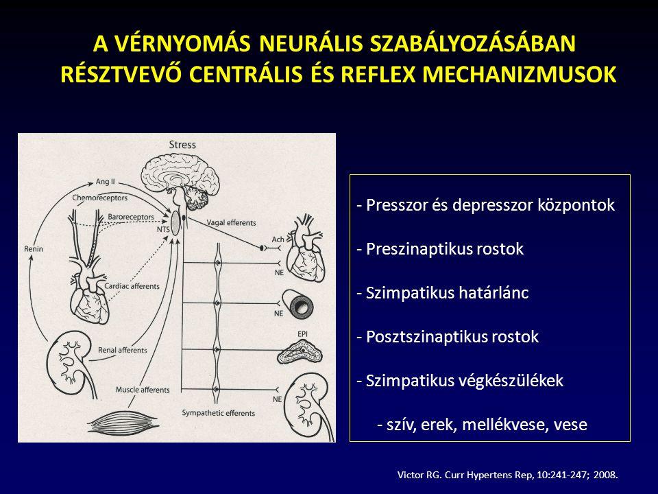 A VÉRNYOMÁS NEURÁLIS SZABÁLYOZÁSÁBAN