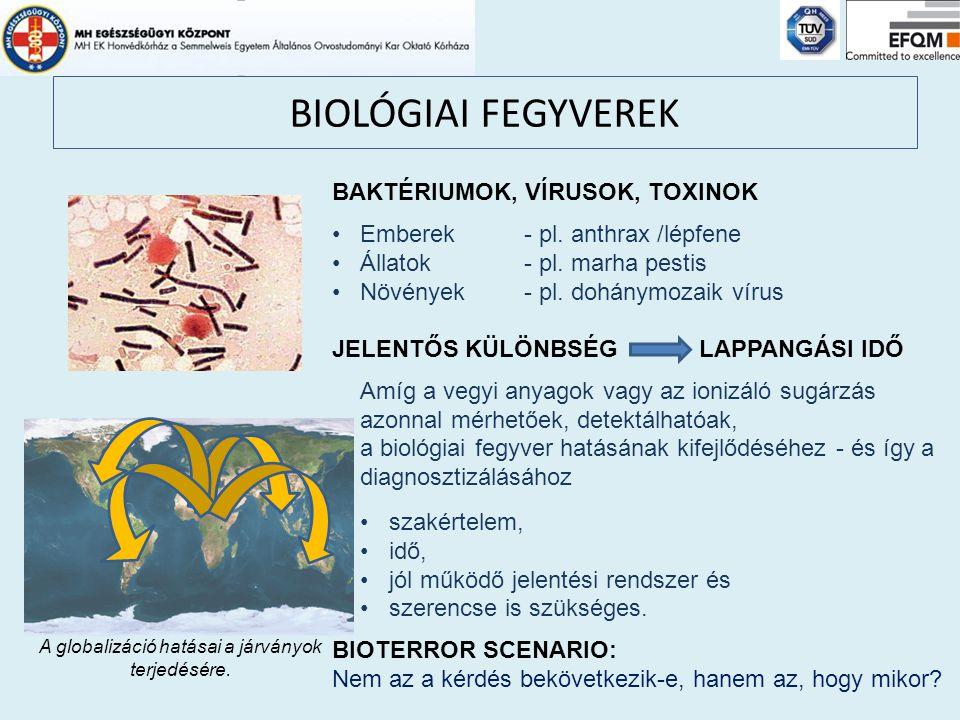 A globalizáció hatásai a járványok terjedésére.