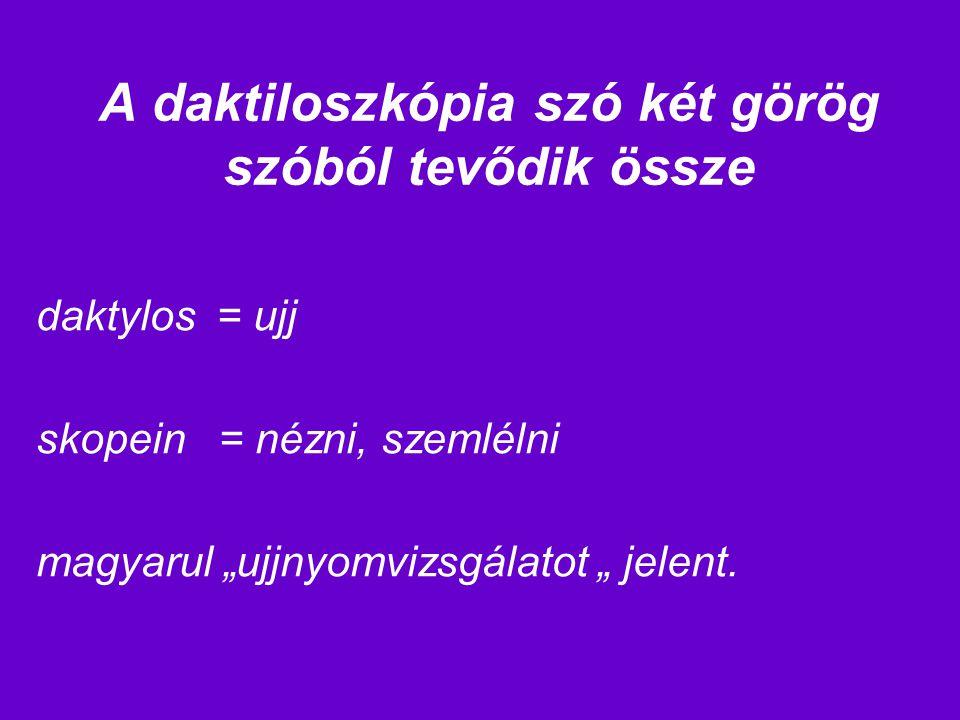 A daktiloszkópia szó két görög szóból tevődik össze