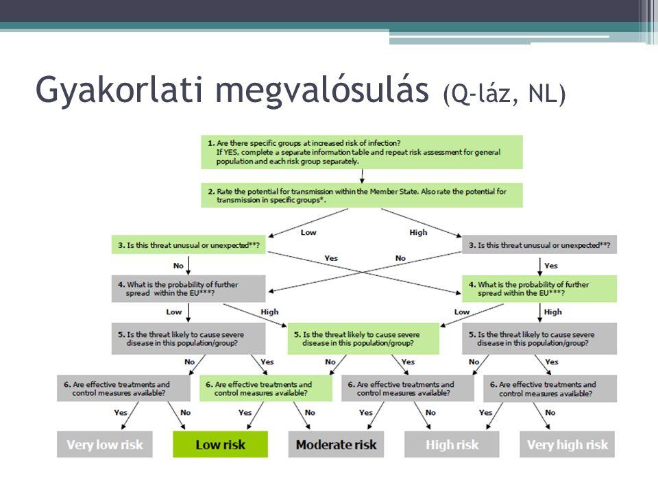 Gyakorlati megvalósulás (Q-láz, NL)