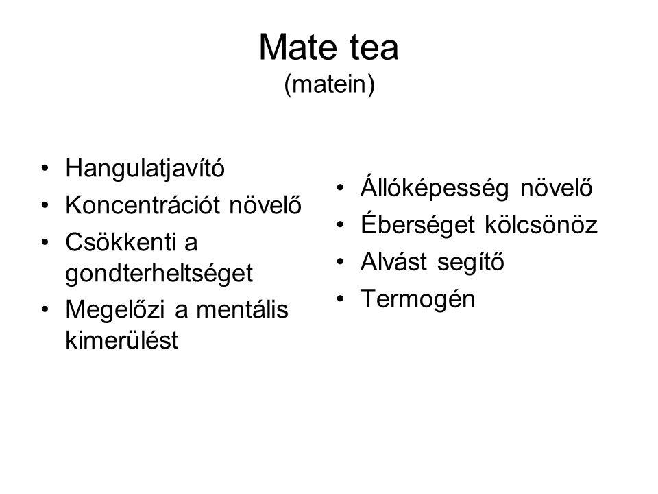 Mate tea (matein) Hangulatjavító Koncentrációt növelő